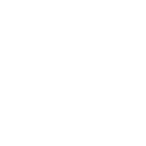 Smart Coin Classifier ™